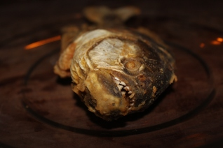 Fried Piranha