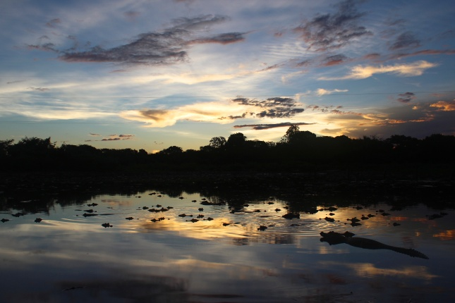 Sunset over Caiman Lake