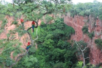 Sink Hole Macaws