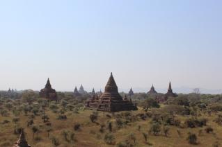 ...Pagodas